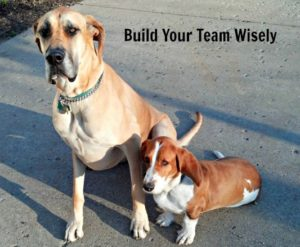 Build Your Teamwork Wisely